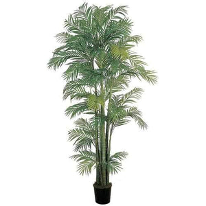 7' Areca Silk Palm Tree