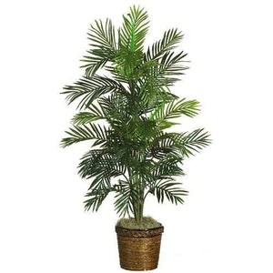 56 Areca Palm Silk Tree w/Basket""