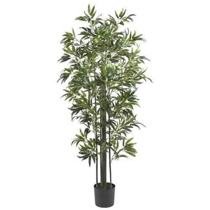 6' Bamboo Silk Tree (Green Trunks)