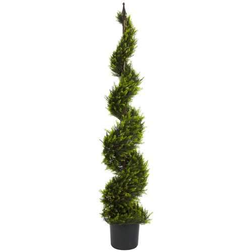 5' Cypress Spiral Tree Silk
