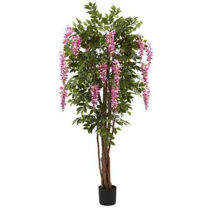 6.5 Wisteria Silk Tree