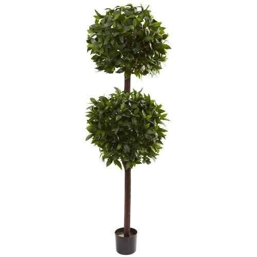 6 Sweet Bay Double Ball Topiary Silk Tree
