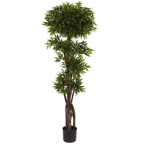 5 Ruscus Tree Silk
