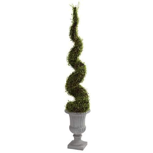 Mohlenbechia Spiral Tree w/Decorative Urn Silk