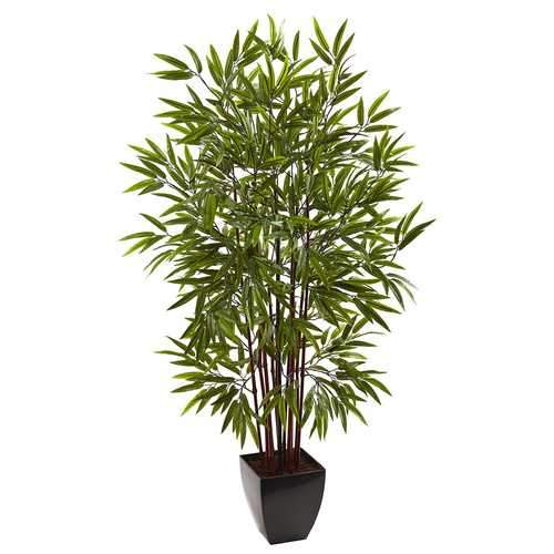 5 Bamboo Silk Tree w/Planter