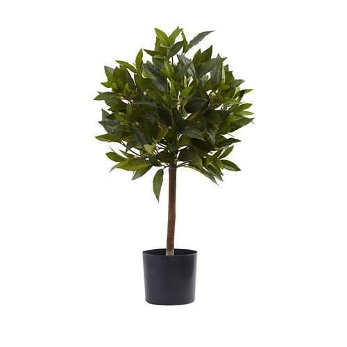 2' Sweet Bay Mini Ball Topiary Silk Tree