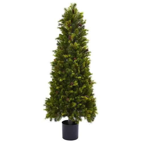 50 Pine Cone Top Silk Tree