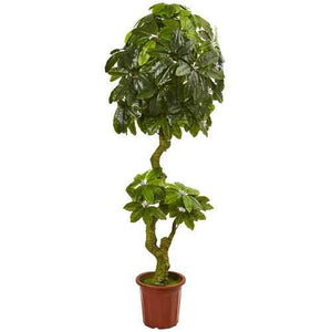6' Schefflera Artificial Tree UV Resistant (Indoor/Outdoor) Silk Trees