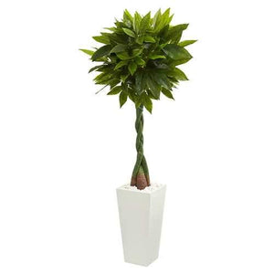 5.5 Money Artificial Tree in White Tower Planter (Real Touch) Silk Trees