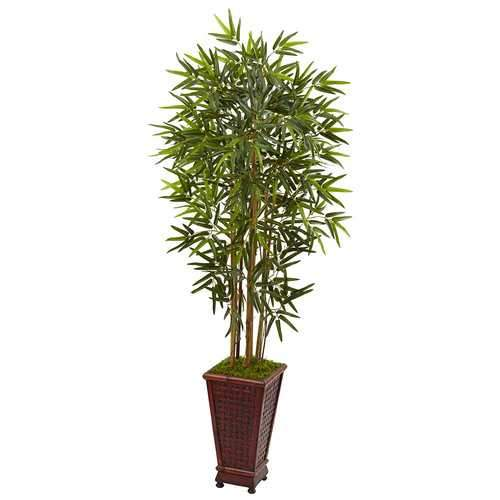 5 Bamboo Tree in Decorative Planter Silk