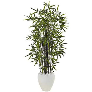 5 Black Bamboo Tree in White Oval Planter Silk