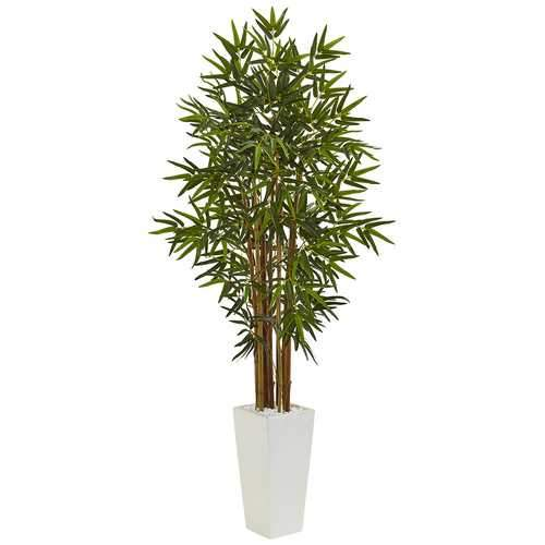 5 Bamboo Tree in White Tower Planter Silk