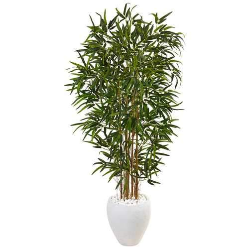 5 Bamboo Tree in Oval White Planter Silk