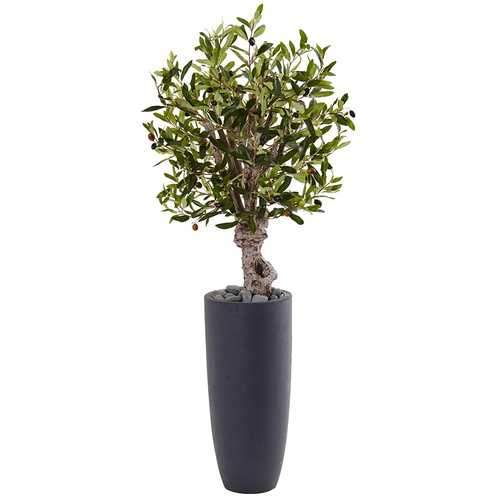 3.5 Olive Tree in Gray Cylinder Planter Silk