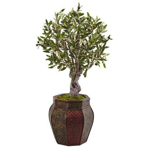 3 Olive Tree in Weave Panel Planter Silk