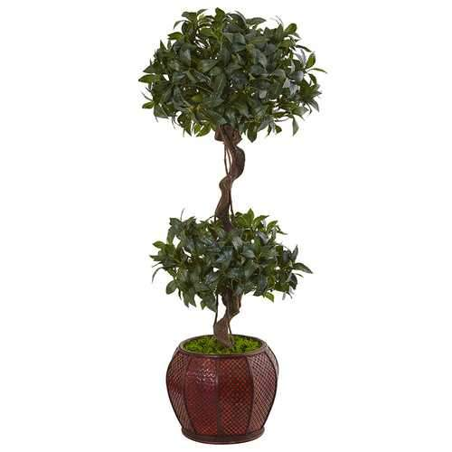 4.5 Sweet Bay Double Topiary Tree in Round Wood Planter Silk