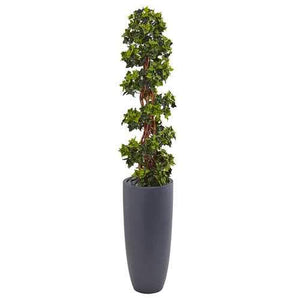 5 English Ivy Spiral Topiary Tree in Gray Cylinder Planter UV Resistant (Indoor/Outdoor) Silk