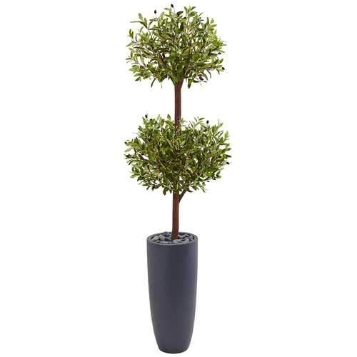 6 Olive Double Tree in Gray Cylinder Planter Silk