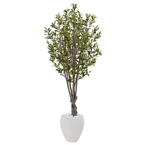 5 Olive Tree in White Oval Planter Silk