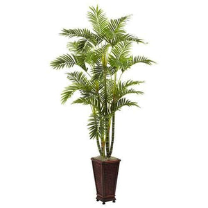 6.5 Areca w/Decorative Planter Silk Tree