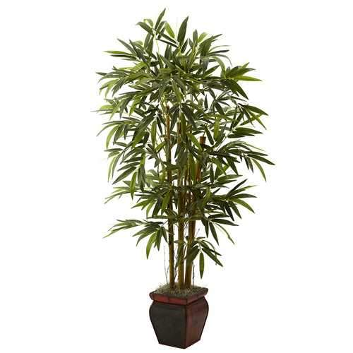 5.5 Bamboo w/Decorative Planter Silk Tree