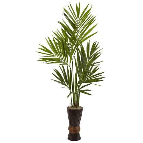 6 Kentia Tree w/Bamboo Planter Silk