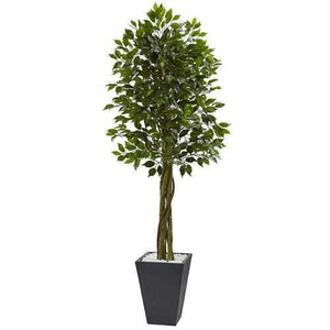 6.5 Ficus Tree with Slate Planter UV Resistant (Indoor Outdoor) Silk