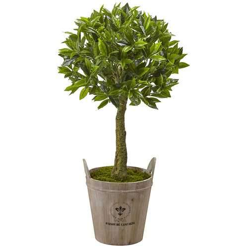 Sweet Bay Topiary with Farmhouse Planter Silk Tree
