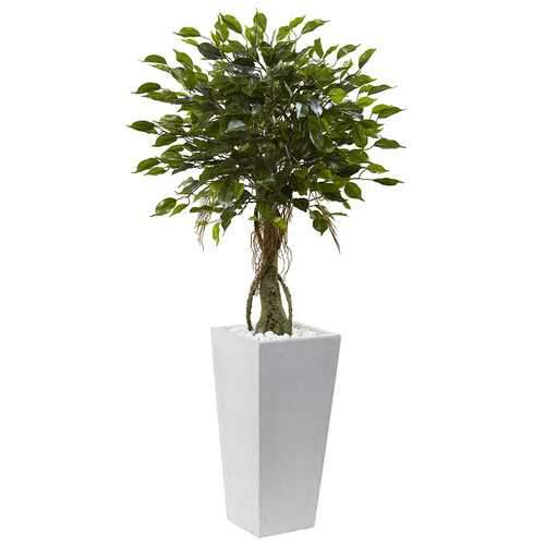 Ficus Tree with White Planter UV Resistant (Indoor/Outdoor) Silk
