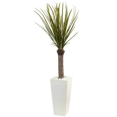 4 Yucca Tree in White Tower Planter Silk