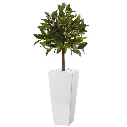 3 Sweet Bay Tree in White Tower Planter Silk