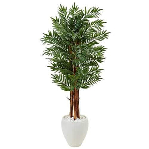 5 Parlor Palm Tree in White Oval Planter Silk