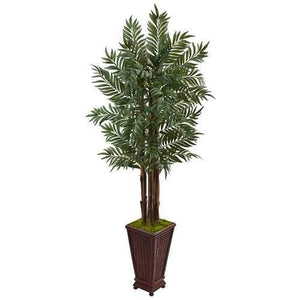5 Parlor Palm Tree in Wooden Decorated Planter Silk