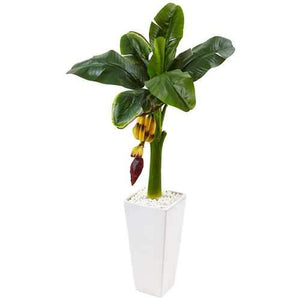 3.5 Banana Tree in White Tower Vase Silk