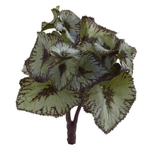 Rex Begonia Artificial Bush (Set of 12) Silk Plants