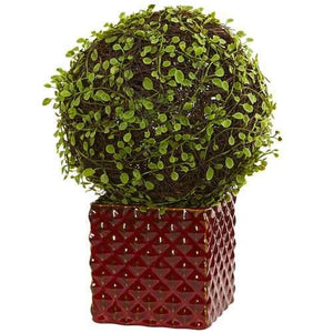Mohlenbechia Ball Artificial Plant in Red Ceramic Cube Silk Plants
