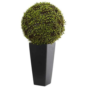 Mohlenbechia Ball Artificial Plant in Black Tower Vase Silk Plants