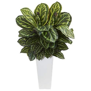 Maranta Artificial Plant in White Tower Vase Silk Plants