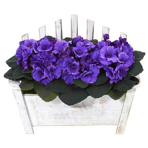 African Violet Artificial Plant in Wooden Bench Planter Silk Plants