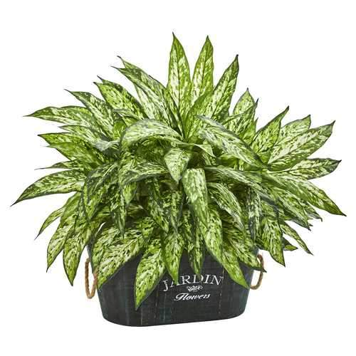 Aglonema Artificial Plant in Wood Planter Silk Plants