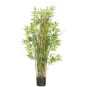 5' Bamboo Grass Silk Plant Tree