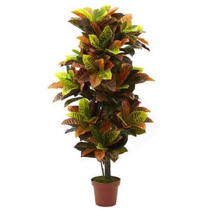 56 Croton Plant (Real Touch) Silk