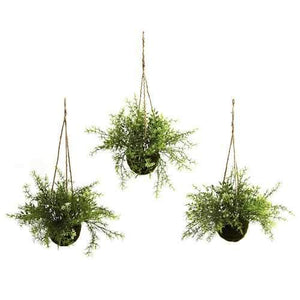 Ruscus, Sedum & Springeri Hanging Basket (Set of 3) Silk Plant