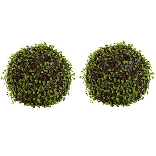9 Mohlenbechia Ball (Set of 2) Silk Plant