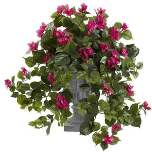 Bougainvillea with Decorative Urn Silk Plant