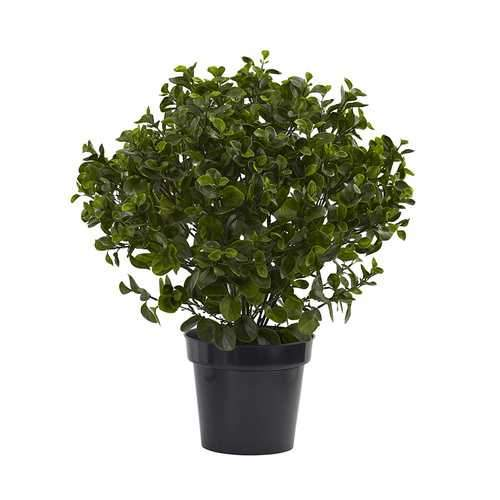 28 Peperomia Plant UV Resistant (Indoor/Outdoor) Silk