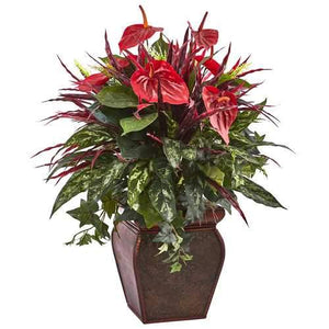 Anthurium Mixed Plant with Planter Silk