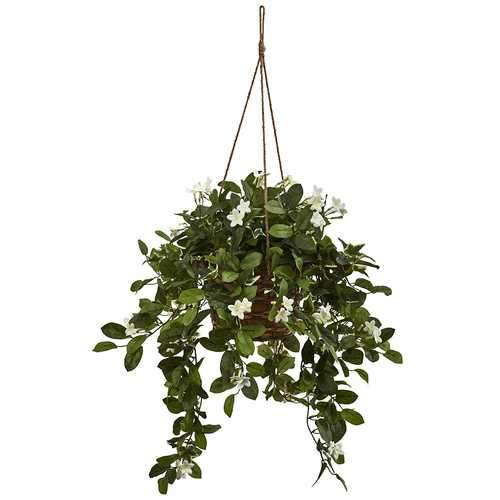 Mixed Stephanotis Hanging Basket Silk Plant