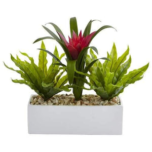 Bromeliad and Birdsnest in Rectangular Planter Silk Plant
