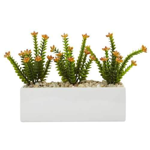 Flowering Sedum in Rectangular Planter Silk Plant
